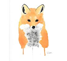 Fox Photographic Print