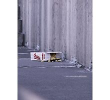 The Lonely Orioles box Photographic Print