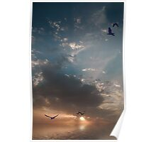 PEACE & TRANQUILITY Poster