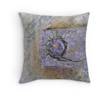 eye of rust Throw Pillow