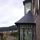 quaint windows by armadillozenith