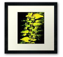 killer croc Framed Print
