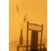 Grass on Glass Photographic Print