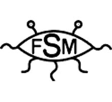 Why FSM? by redqueenself