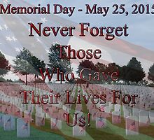 Memorial Day - May 24, 2015 by barnsis