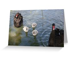 Black Swan Family Greeting Card