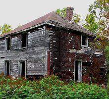 Ghost Town of Jackfish Ontario by loralea