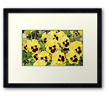 Yellow And Brown Flowers Framed Print