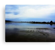 I want To Go To The Ocean. South Beach, Ore. Canvas Print