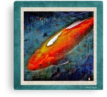Colourful Carp Canvas Print