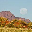 Moonrise by philippeB