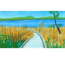 Boardwalk to Great Bay Photographic Print