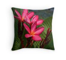 Hot Pink Throw Pillow