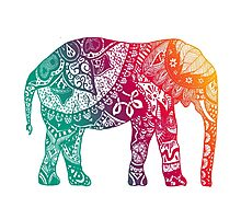 Warm Elephant Photographic Print