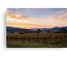Sunset over the vines Canvas Print