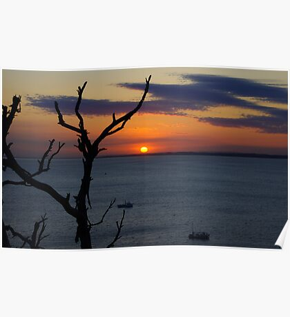 Sunrise and silhouettes Poster