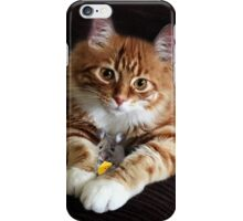OPPOSITES DO ATTRACK...BEST FRIENDS,FELINE AND MOUSE, PILLOWS,TOTE BAGS,PICTURES,ECT. iPhone Case/Skin