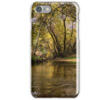 Hidden Creeks  iPhone Case/Skin