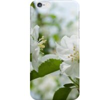Fanciful Blossoms iPhone Case/Skin