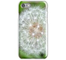 Spring's Last Breath iPhone Case/Skin
