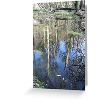Hairy Trees in Water Greeting Card