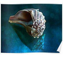 Aquatic Dreams IV Poster