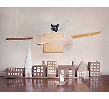 Ameowlia Photographic Print