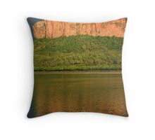 Python Cliffs Throw Pillow