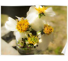 Sunlit Flowers - Nature Photography Poster