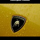 2012 Lamborghini Calendar by Aussie Exotics
