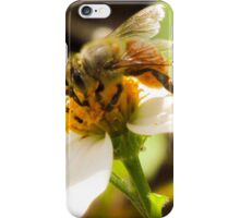 Bee on Beggar's Tick  iPhone Case/Skin