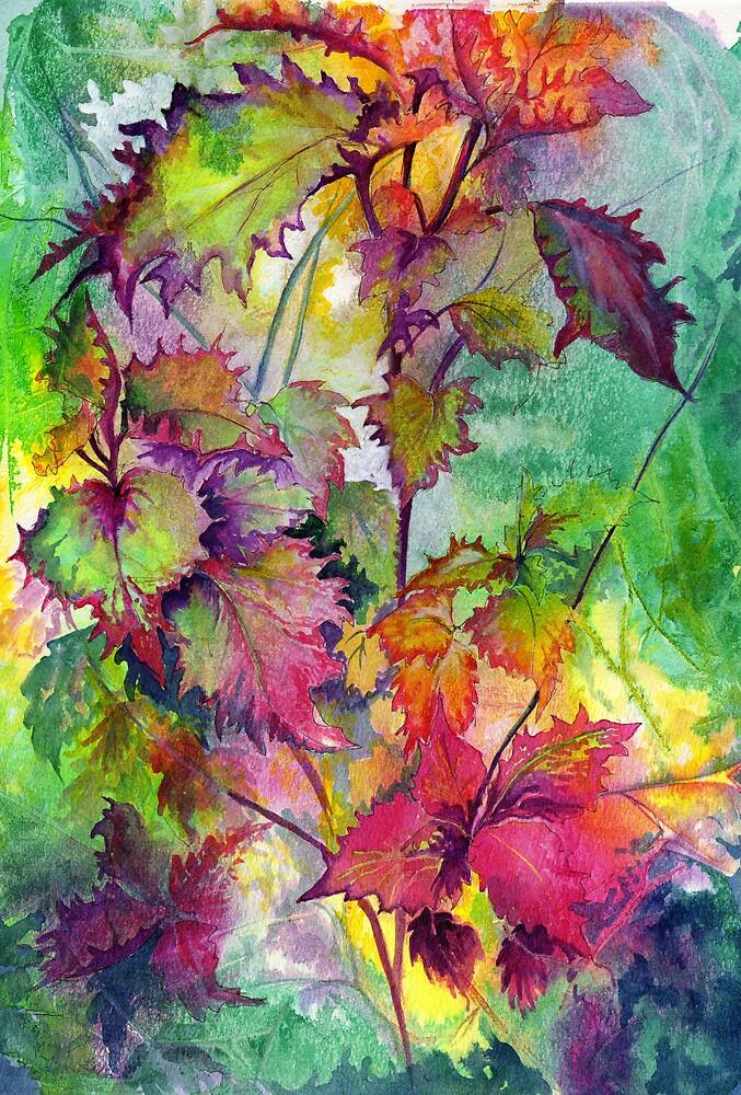Coleus by Maureen Whittaker