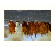 HORSE DRIVE ~CHERRY CREEK NEVADA  Art Print