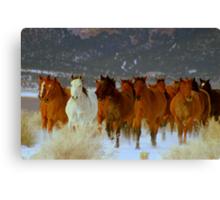 HORSE DRIVE ~CHERRY CREEK NEVADA  Canvas Print