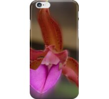 'picture perfect' Orchid 10 iPhone Case/Skin