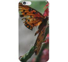 Butterfly with Broken Wings iPhone Case/Skin