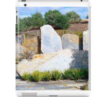 Avenue of slate iPad Case/Skin