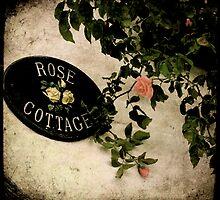 rose cottage by Sonia de Macedo-Stewart