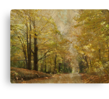 Road With a View Canvas Print
