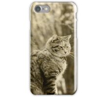 Memories of Kitty ... iPhone Case/Skin