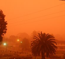Dust Storm hits Sydney, Australia. by CapturedByKylie