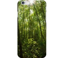 Canopy Sun iPhone Case/Skin