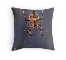 Garden spider and web Throw Pillow