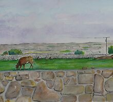 Country view near Galway by Gary Shaw