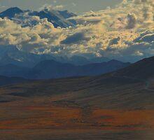 Mt. McKinley by Despot