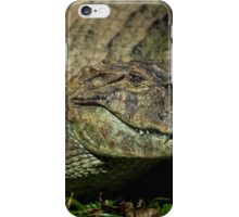 Caiman at the Iguazu Bird Park iPhone Case/Skin