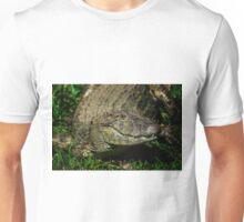 Caiman at the Iguazu Bird Park Unisex T-Shirt
