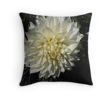 Ivory Dahlia Throw Pillow