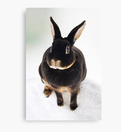 Louise Canvas Print