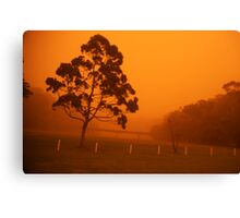 Red dust  Canvas Print